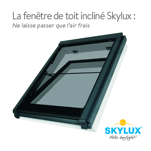 La fenêtre de toit incliné Skylux